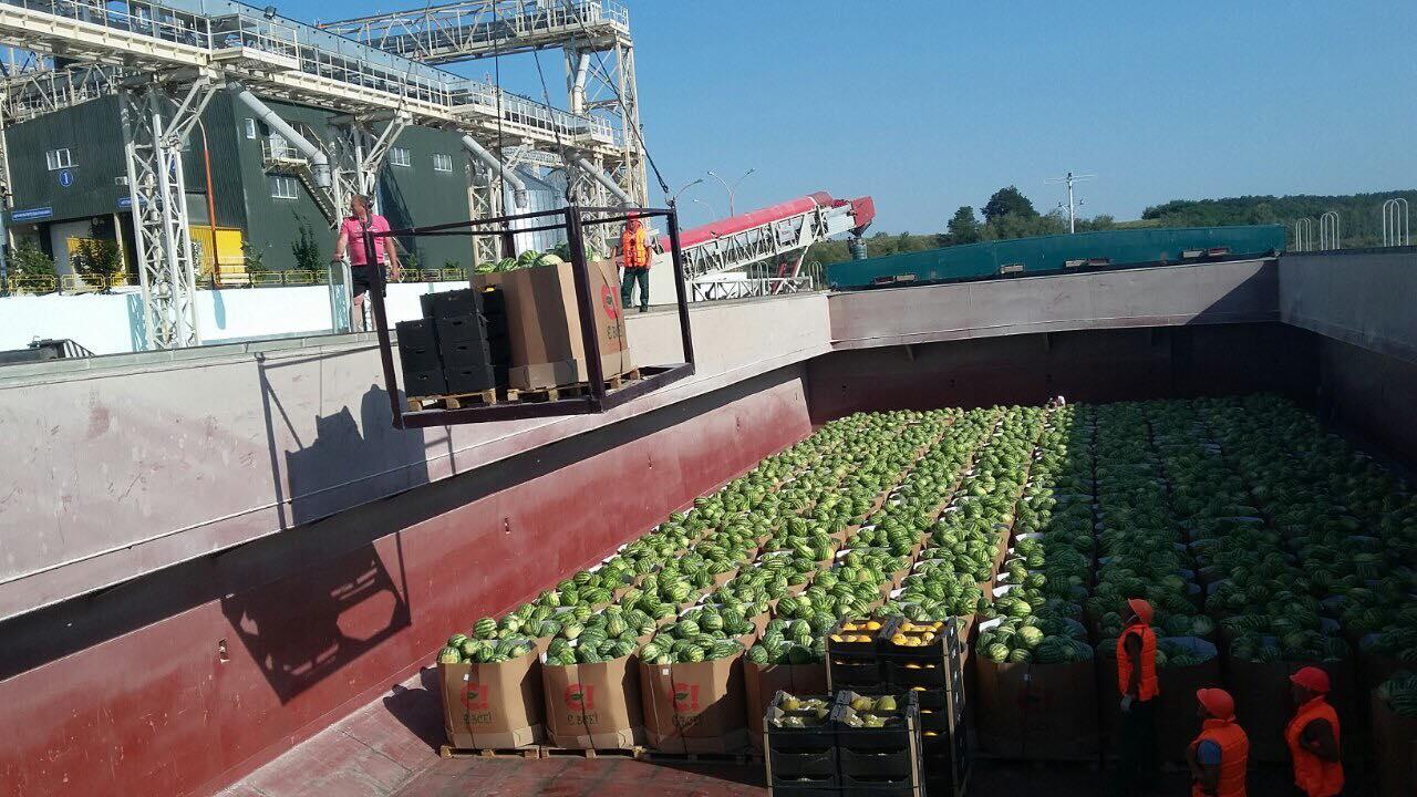В Киев прибыла первая баржа с арбузами (фото)