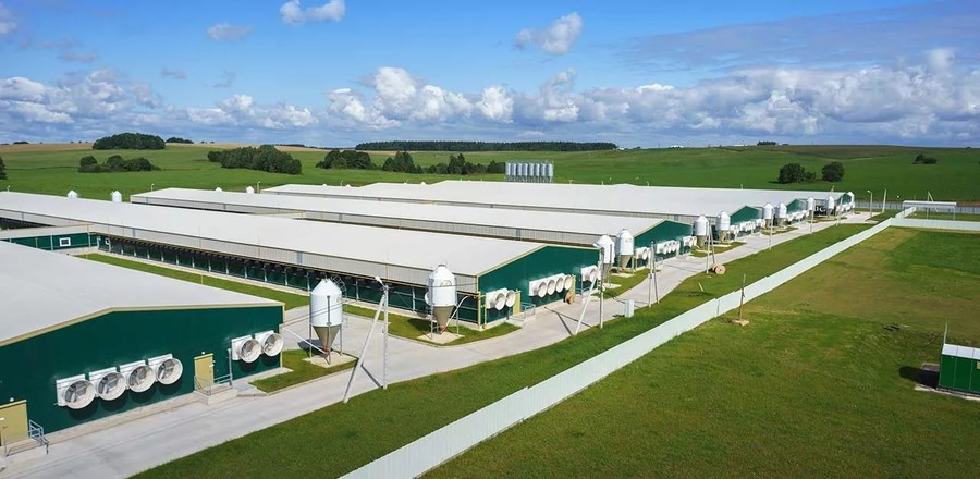 IEK GROUP поставила оборудование для крупнейшего свиноводческого комплекса в Европе