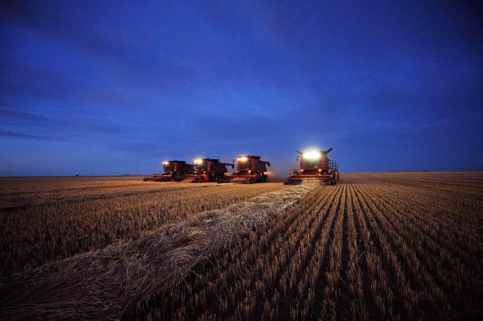 Украина отменила продажу государственного зернотрейдера