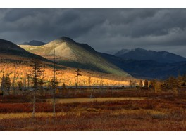 Начинается добыча ресурсов в месторождении «Терем» Магаданской области