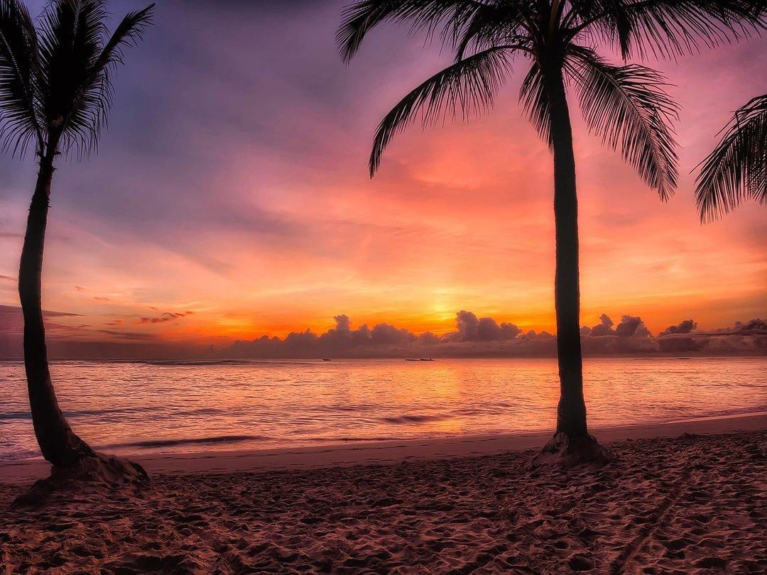 МАУ запустила прямые регулярные рейсы в Доминиканскую республику