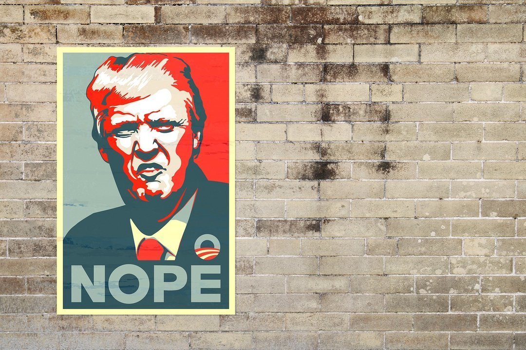Промежуточные выборы в Конгресс США: кого выберут американцы?