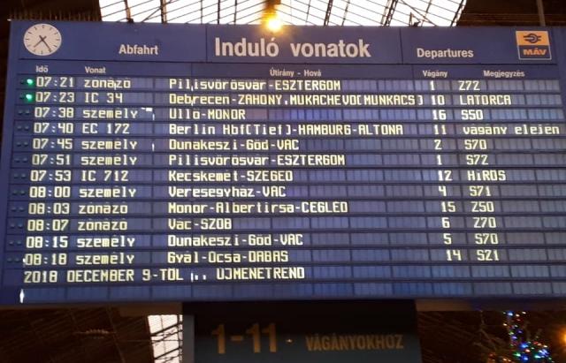 """Поезд """"Мукачево — Будапешт"""" отправился в первый рейс (фото)"""