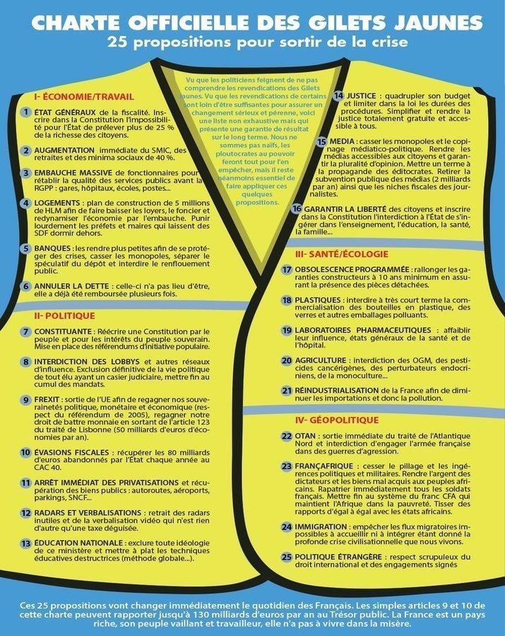 """Какие требования Макрону выдвинули """"желтые жилеты"""" : от запрета ГМО до выхода из ЕС"""